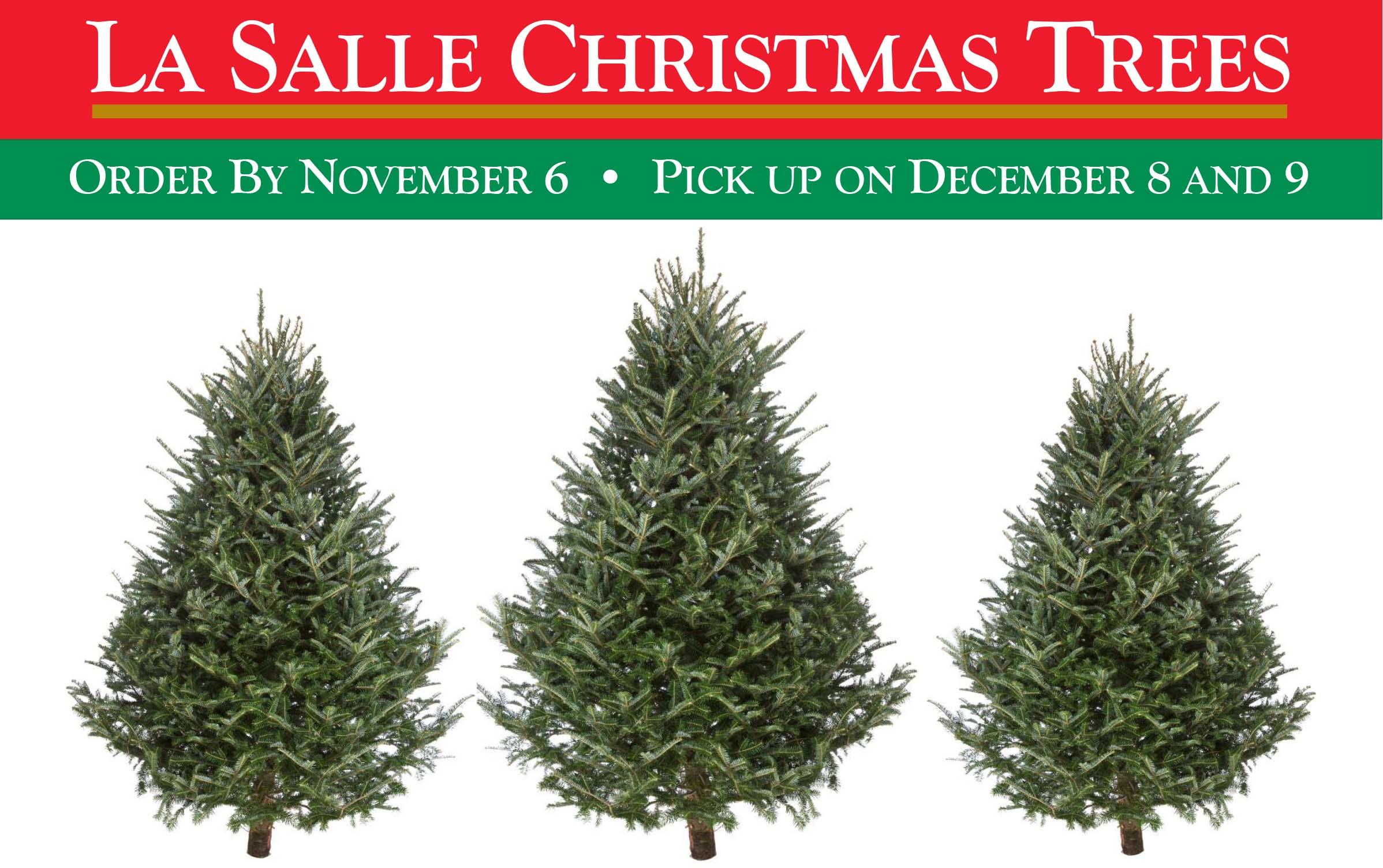 8th annual student life christmas tree sale - Christmas Tree For Sale